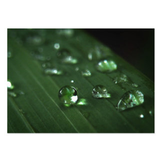 Rain Drop Macro ATC Photo Card Pack Of Chubby Business Cards