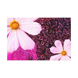 Rain Drop with cosmos flower Gallery Wrapped Canvas