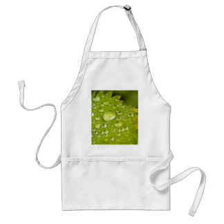 Rain droplets on a green leaf standard apron