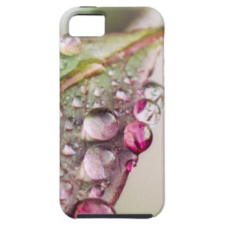 Rain Drops iPhone 5 Case