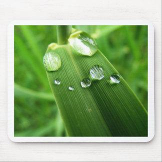 Rain Drops Mouse Pad