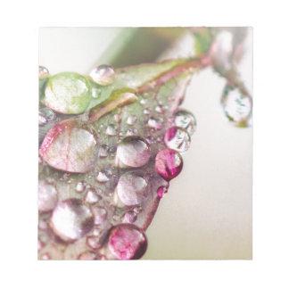 Rain Drops Notepad