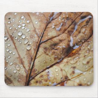 Rain Drops On A Leaf Mouse Pad