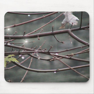 Rain Drops On Maple Tree Branches. Mousepad