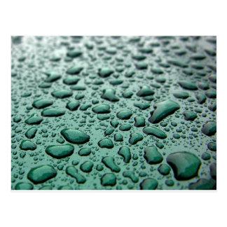 Rain Drops Postcard