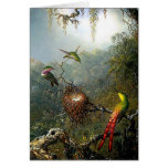 Rain Forest Hummingbirds Card