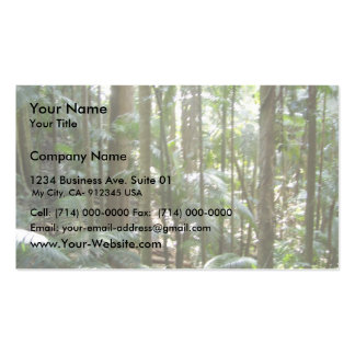 Rain Forest In Australia Business Cards