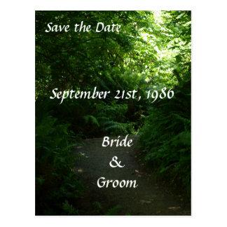 Rain Forest Path Wedding Postcards