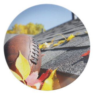 Rain Gutter Full Of Autumn Leaves Party Plate