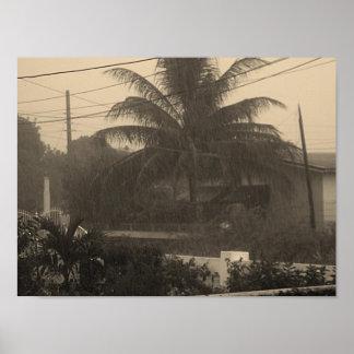 Rain in Jamaica Posters