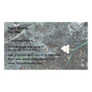 Rain Lily Business Card Templates