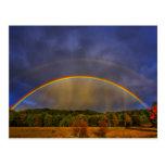 Rainbow #0954 post card