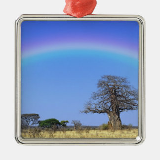 Rainbow and African baobab tree, Adansonia Christmas Ornament