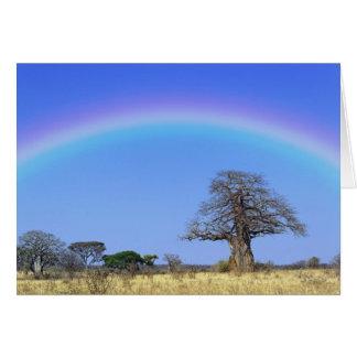 Rainbow and African baobab tree, Adansonia Greeting Card