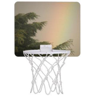 Rainbow and Trees Basketball Hoop