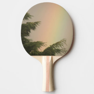Rainbow and Trees Ping Pong Paddle