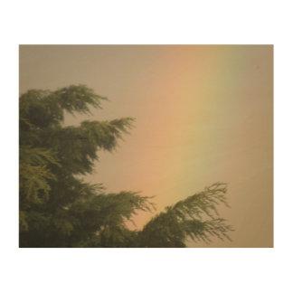 Rainbow and Trees Wood Canvas