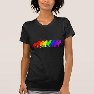 Rainbow AWS T-shirt