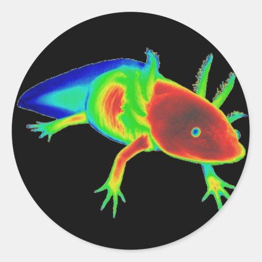 Rainbow Axolotl Stickers