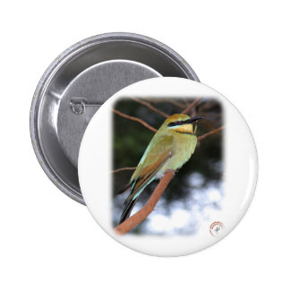 Rainbow Bee Eater 9Y209D-236 Button
