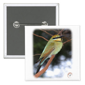 Rainbow Bee Eater 9Y209D-236 Pinback Button