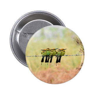 RAINBOW BEE EATER BIRD RURAL QUEENSLAND AUSTRALIA 6 CM ROUND BADGE