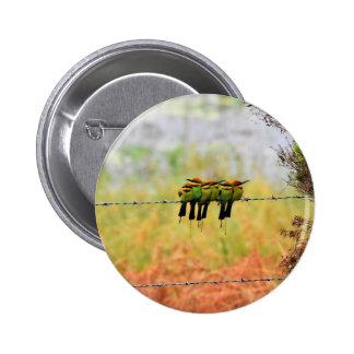 RAINBOW BEE EATER BIRDS QUEENSLAND AUSTRALIA 6 CM ROUND BADGE