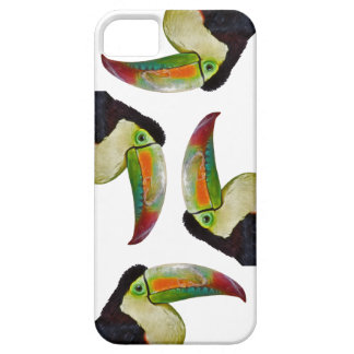 Rainbow-Billed Toucan iPhone 5 Case(Choose Colour) iPhone 5 Cover