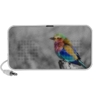 Rainbow Bird Notebook Speaker