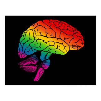 Rainbow Brain Postcard