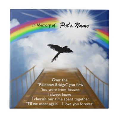 Rainbow Bridge Memorial Poem For Cats Tile Zazzlecouk