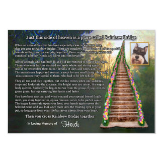 Rainbow Bridge Pet Loss Photo Sympathy Card