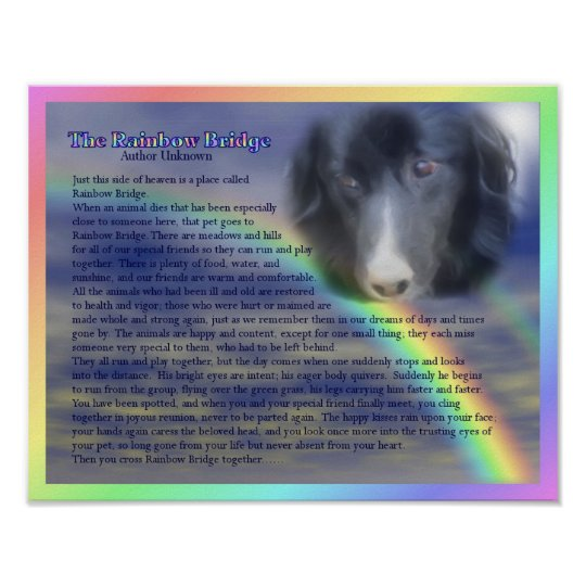 Rainbow Bridge Poem Pet Loss Memorial Poster