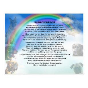 photograph relating to Rainbow Bridge Printable titled Rainbow Bridge Poem Postcard