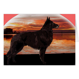 Rainbow Bridge Sympathy Card: Belgian Tervuren Greeting Card