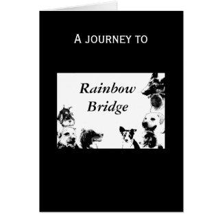 Rainbow Bridge - sympathy for dog Card