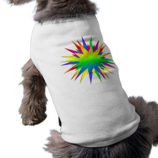 Rainbow Burst pet clothing