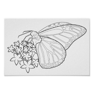 Rainbow Butterflies and Starflowers Blank Coloring Poster