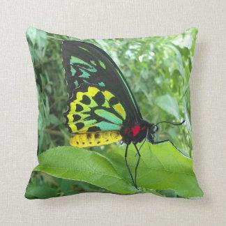 Rainbow Butterfly American Mojo Pillow