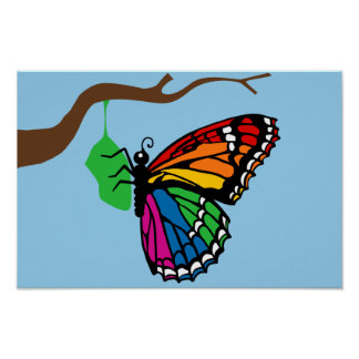 Rainbow Butterfly Emerging From Chrysalis Poster