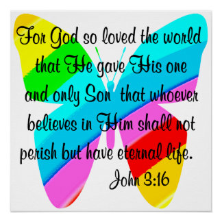RAINBOW BUTTERFLY JOHN 3:16 DESIGN POSTER