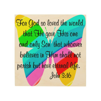 RAINBOW BUTTERFLY JOHN 3:16 DESIGN WOOD CANVAS