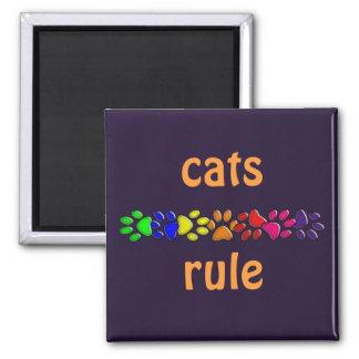 rainbow cat print magnet