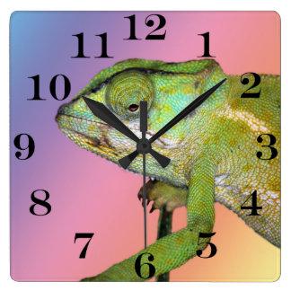 Rainbow chameleon square wall clock
