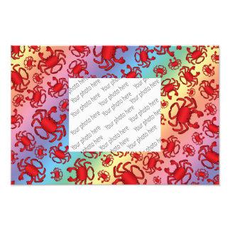 Rainbow crab pattern photographic print