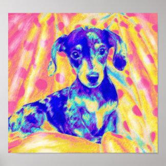 rainbow dachshund poster