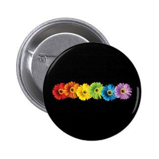 Rainbow Daisies Pinback Button