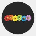 Rainbow Daisies Round Stickers