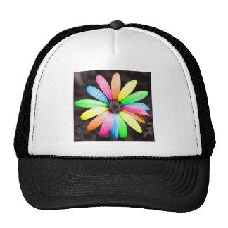 Rainbow daisy flower mesh hat