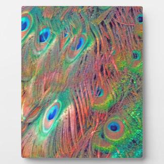 Rainbow Deco Plaque